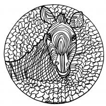 Mandalas sur le th me des animaux 100 mandalas zen - Dessin zebre facile ...