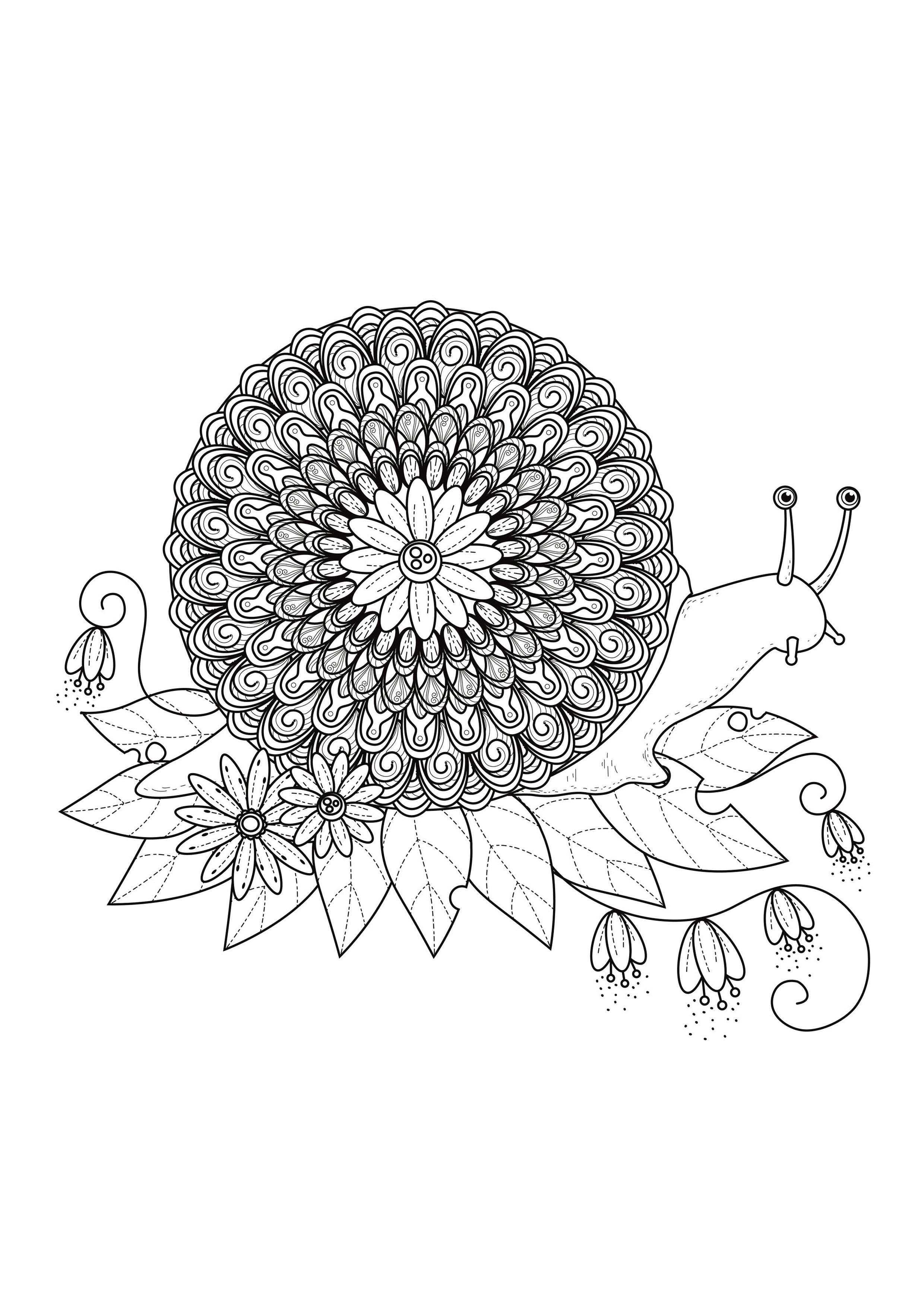 Mandala a colorier escargot mandalas sur le th me des animaux 100 mandalas zen anti stress - Image escargot a colorier ...