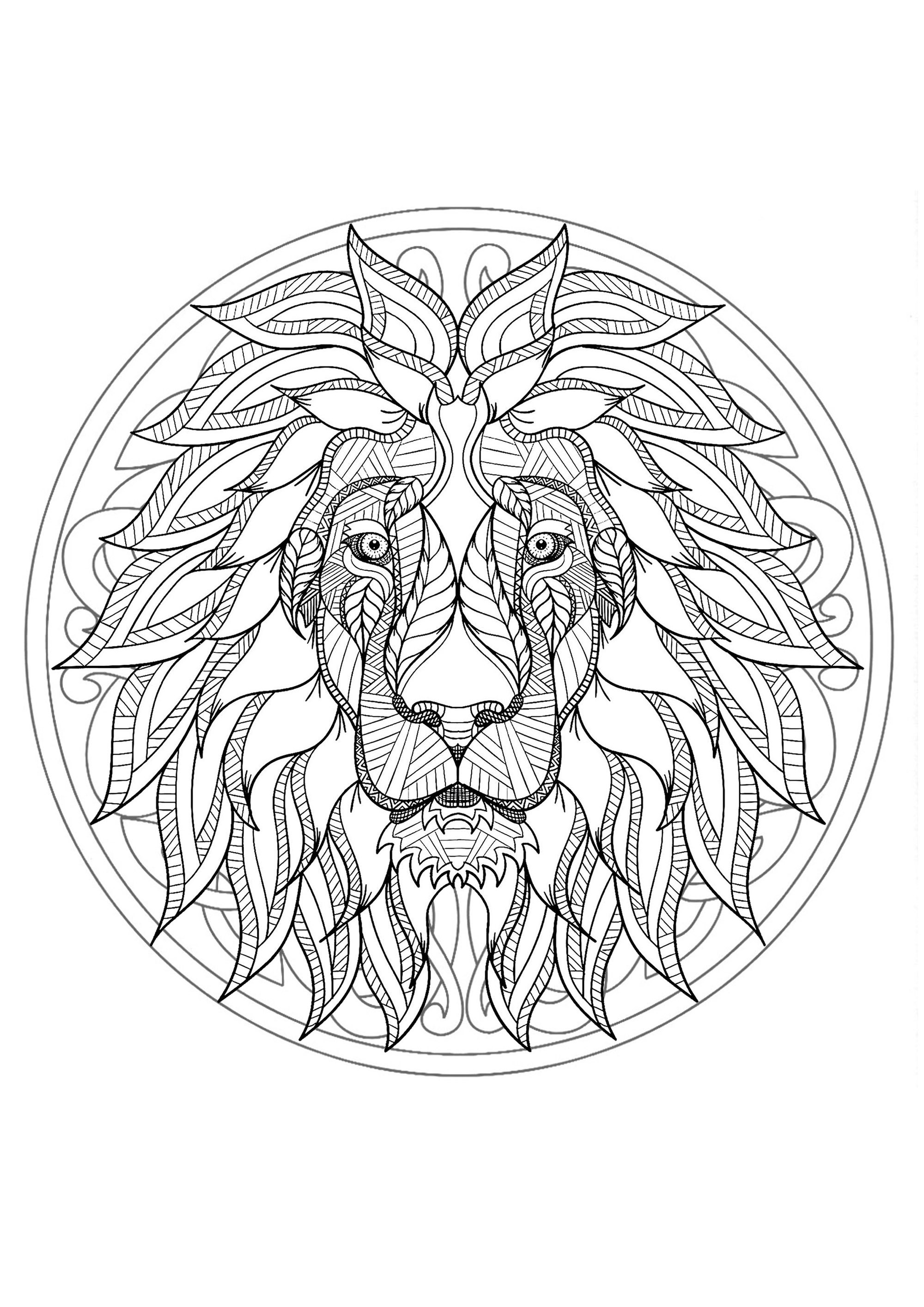 Animal Coloring Books Free