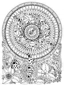 Mandala insectes et fleurs