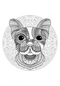 Mandala tête de chien   2
