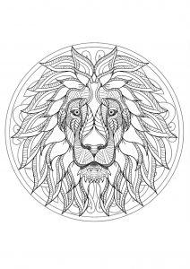 Mandala tête de lion   1