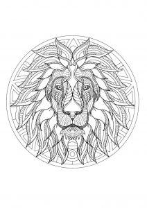 Mandala tête de lion   3