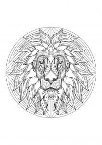 Mandala tête de lion   4