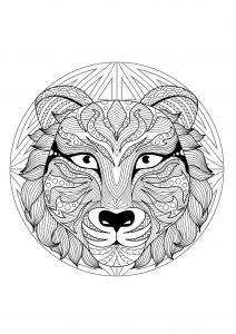 Mandala tête de tigre   2