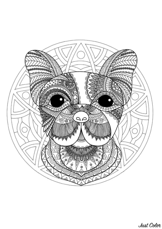 Coloriage De Mandala Danimaux.Mandala Tete De Chien 1 Mandalas Sur Le Theme Des Animaux 100
