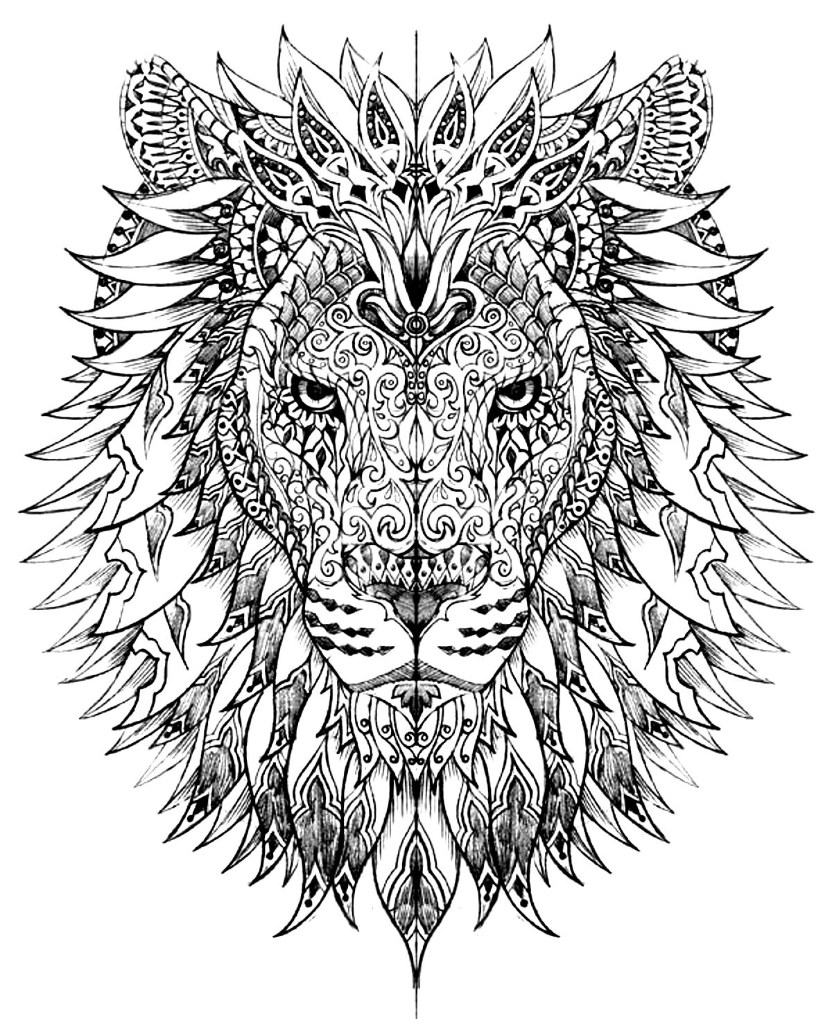 image=animaux coloriage tete lion 1