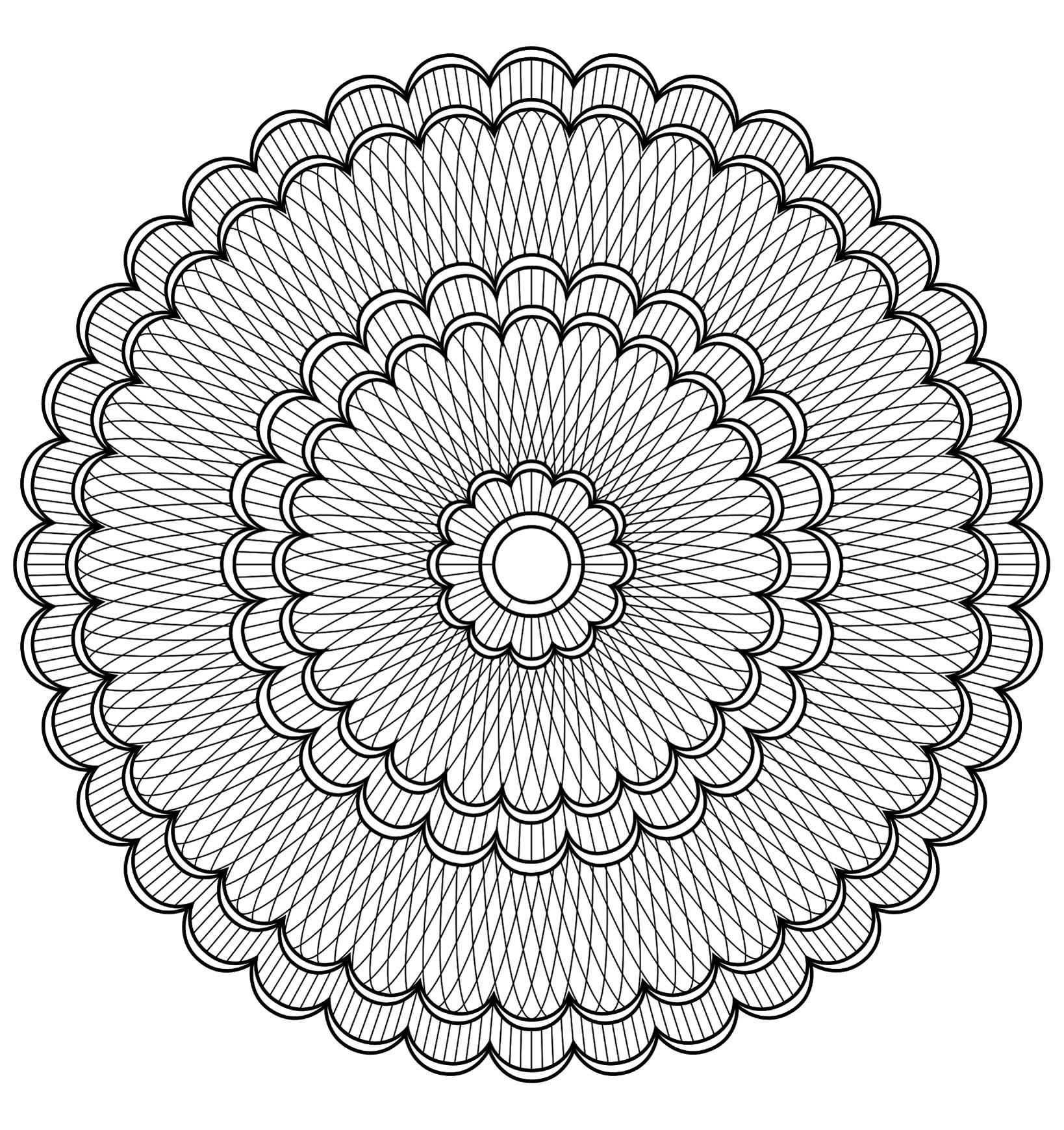 Tr¨s joli mandala  colorier o¹ figure plusieurs fleurs tr¨s jolies Niveau normal