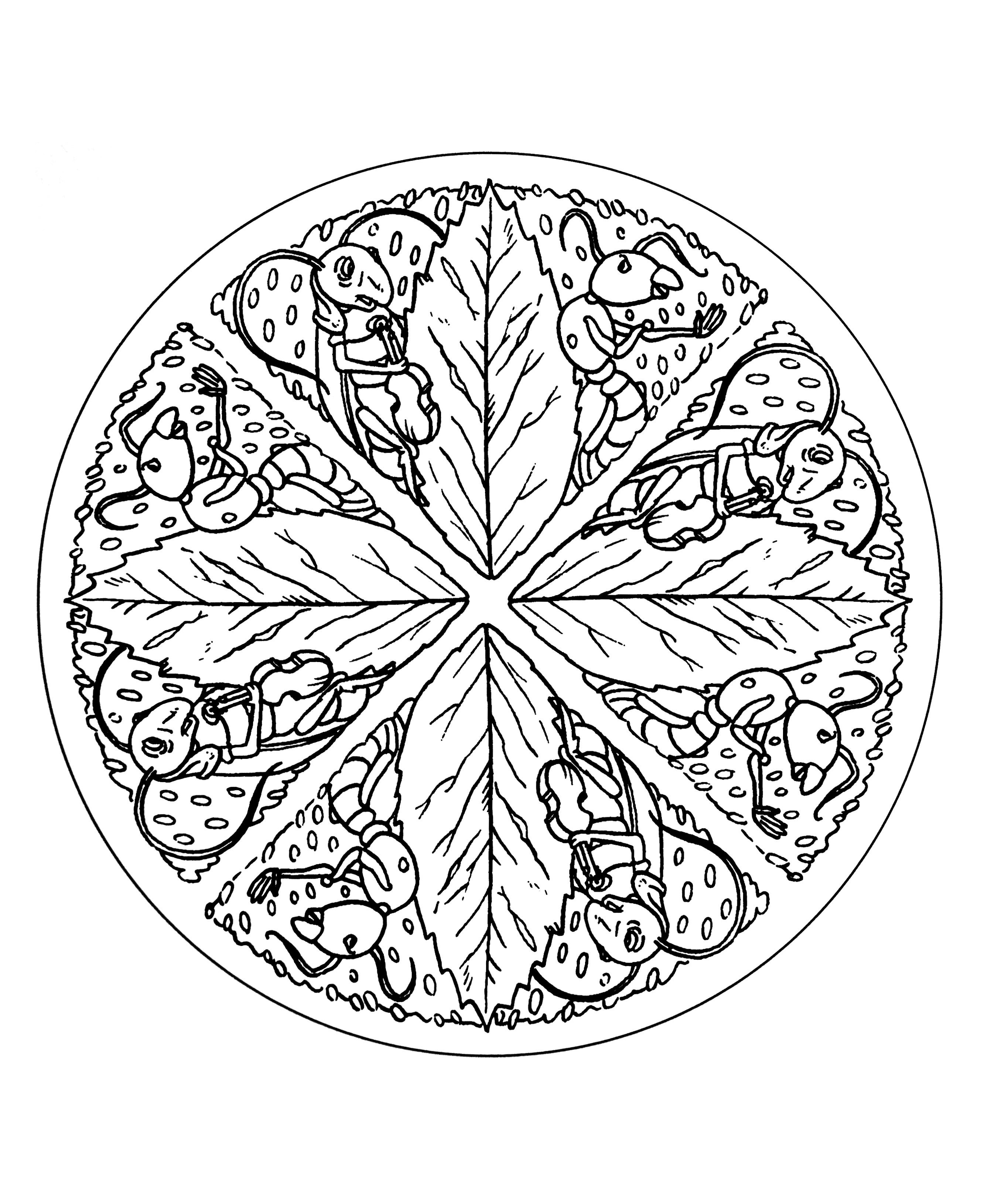 Mandala a colorier difficile 31 mandalas difficiles - Mandalas a colorier ...
