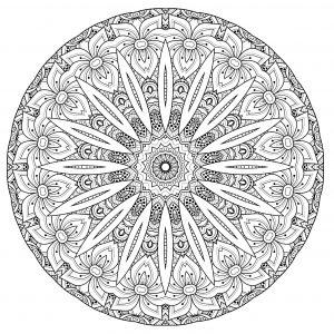 Coloriage Difficile Pour Adulte Mandala.Mandalas Difficiles Pour Adultes 100 Mandalas Zen Anti Stress
