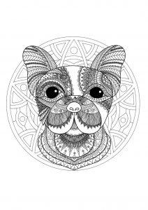 Mandala tête de chien   1