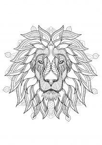 Mandala tête de lion   2