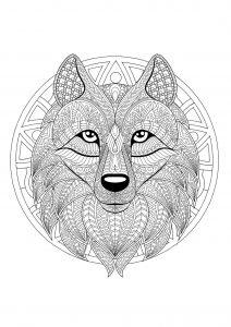Mandala tête de loup   2