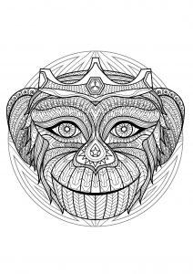 Mandala tête de singe   2