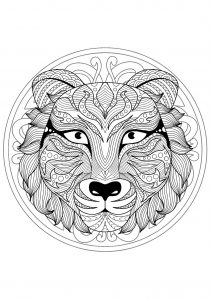 Mandala tête de tigre   1