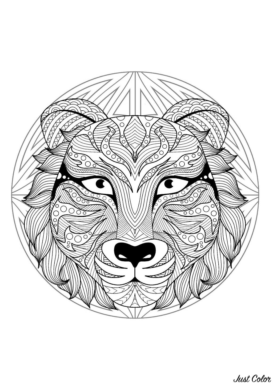 Mandala Tete De Tigre 2 Mandalas Difficiles Pour Adultes 100