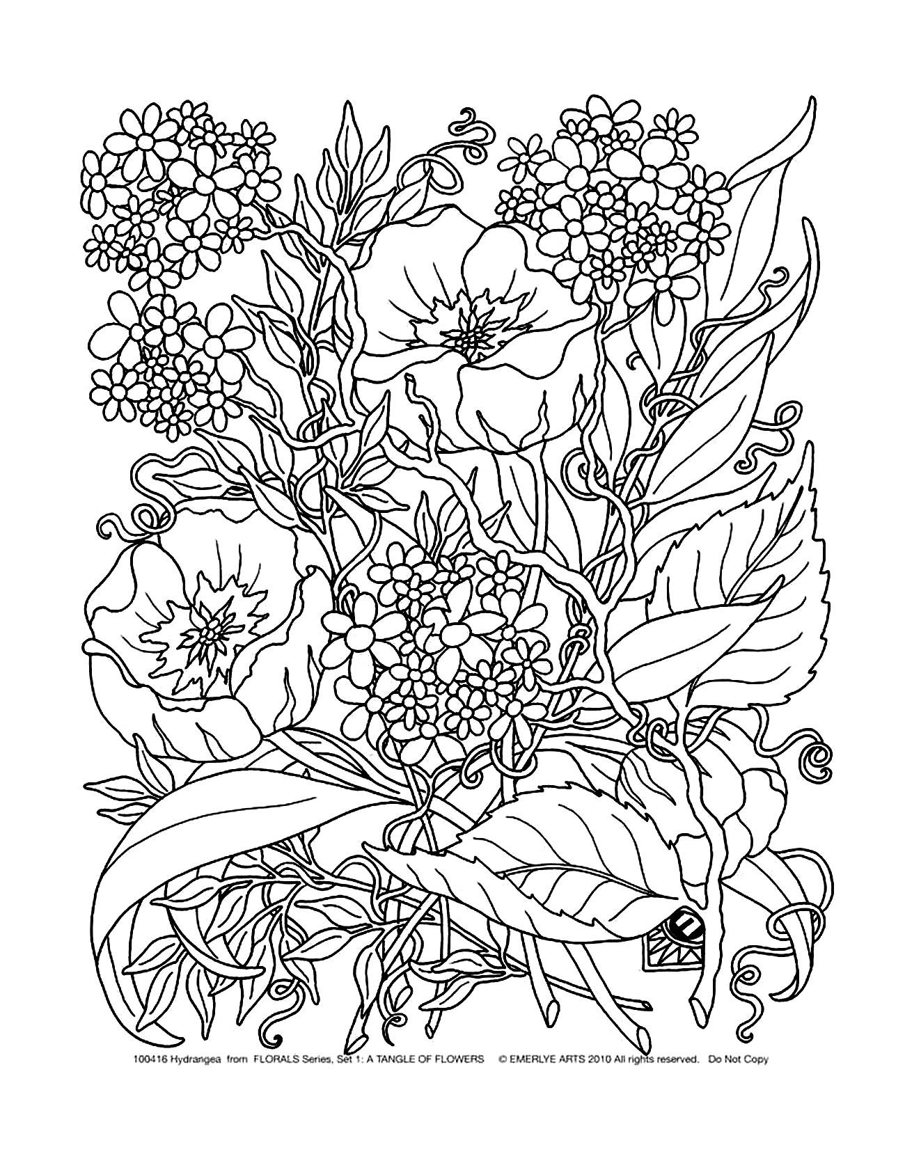 image=fleurs et ve ation coloriage fleurs et ve ation 5 1