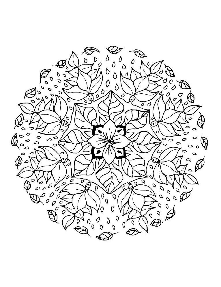 Mandala a colorier fleurs vegetation a imprimer 10 mandalas sur le th me des fleurs et - Coloriage fleur 8 petales ...