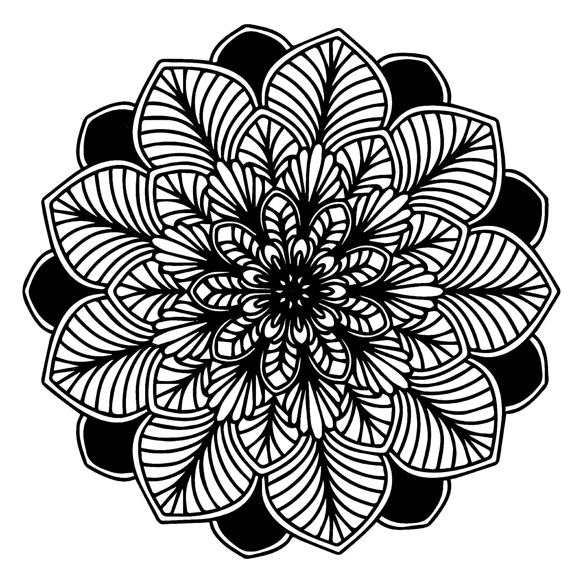 Mandala Feuilles Noir Blanc Mandalas Sur Le Thème Des