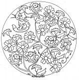 Fleurs et feuilles au sein d'un beau mandala