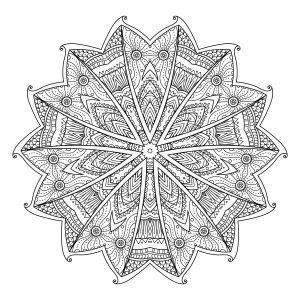Mandala abstrait avec feuilles