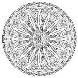 Mandala de haute qualité