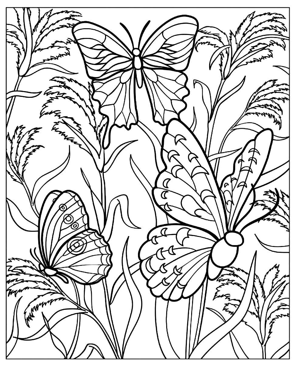 Papillons plantes | Coloriages d\'Insectes - 100% Mandalas Zen & Anti ...