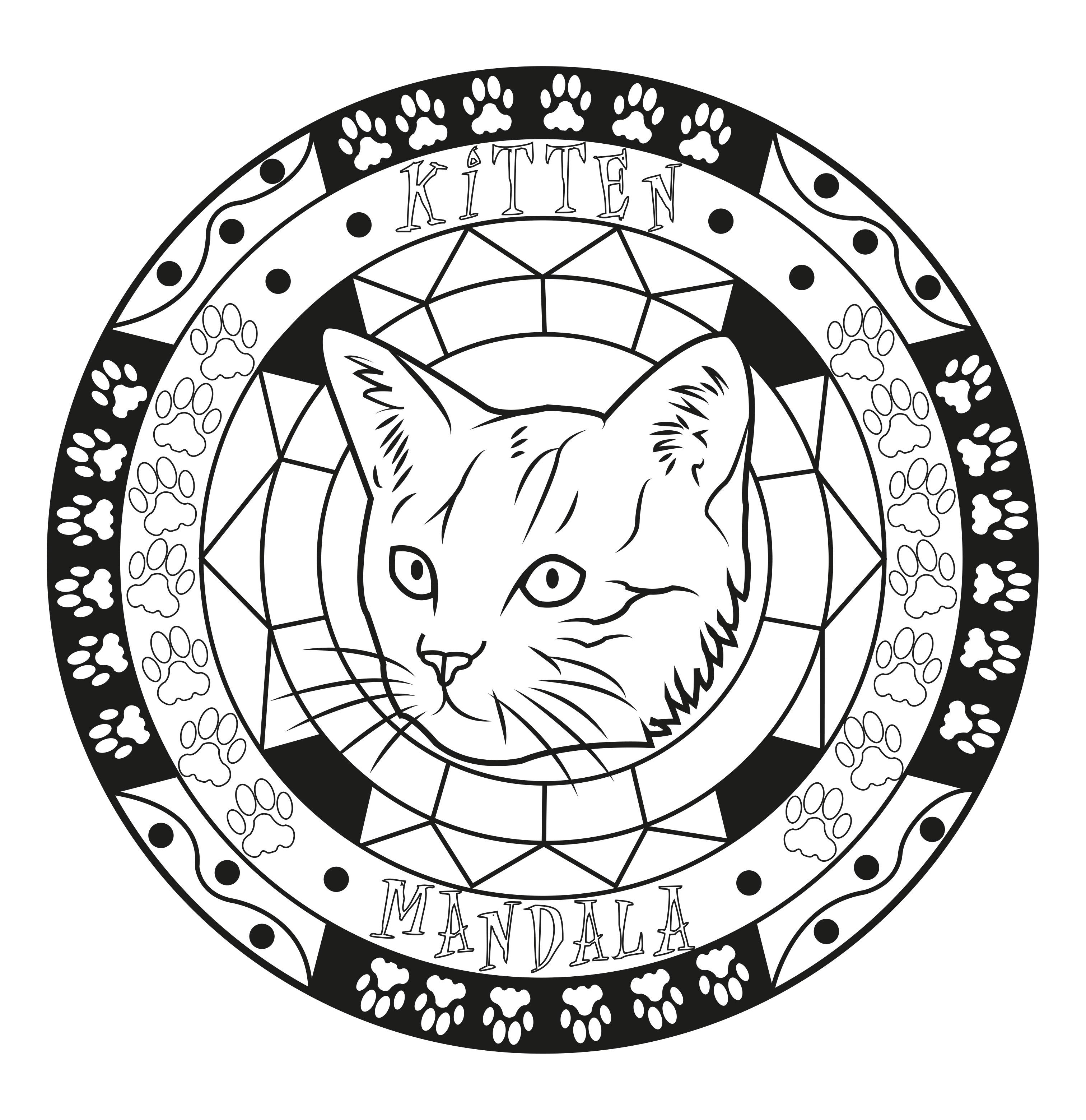 Coloriage Adulte Chat.Mandala Adulte Chat Mandalas De Difficulte Normale 100 Mandalas