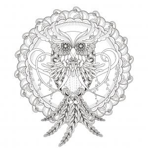 Mandala Attrape Rêve Pour Lâcher Prise Mandalas De Difficulté