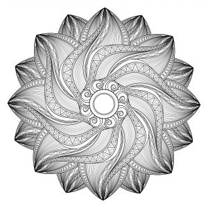 Mandala en mouvement ultra complexe
